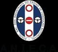 Página Inicial da A.N.I.E.C.A.
